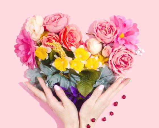 Прекрасный мир цветов
