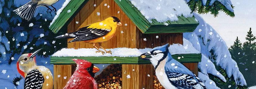 Покормите птиц зимой!